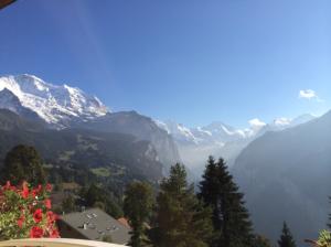 beautiful alpine view