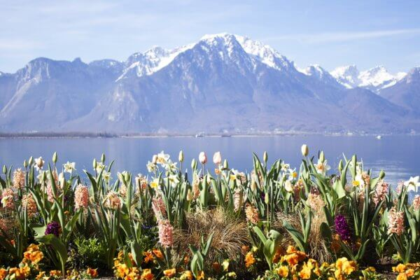 lake-geneva-from-montreux
